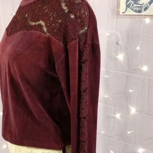 Xhilaration Tops - Plum Cropped Lace and Velvet Sweater